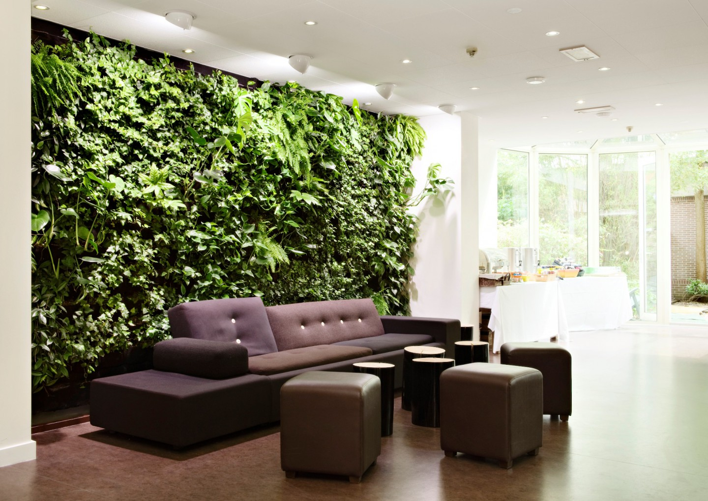 The effect of greenery in your house